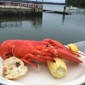 SlipAwaySoftShellLobsterMaine